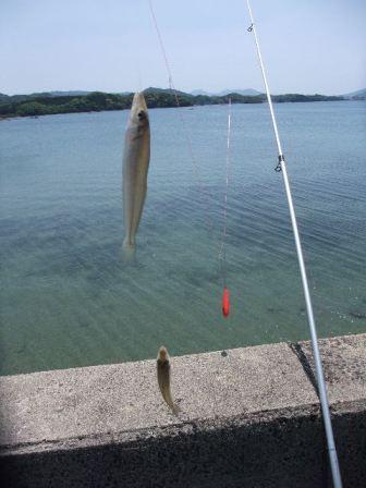 2012_05052012-5-5福島の釣りと0007.JPG